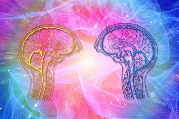 terapia psicologica integrata studio psicoterapia e neuropsicologia roma